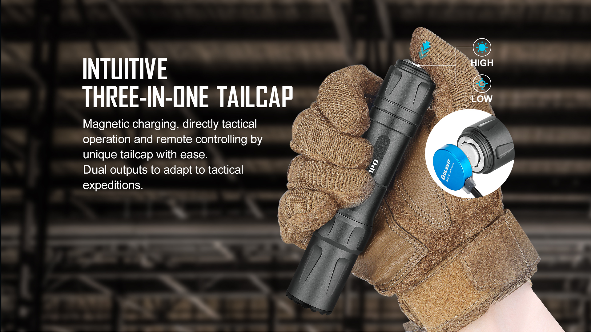 Tactical rail flashlight with magnetic tail switch